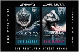 Cover Reveal Graphic and Giveaway for Bloggers